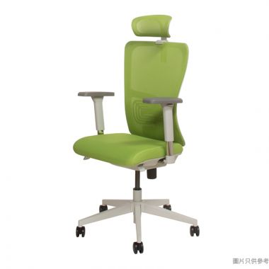 OTIS人體工學扶手轉椅690W x 570-620D x 1090-2071Hmm - 綠色配灰色